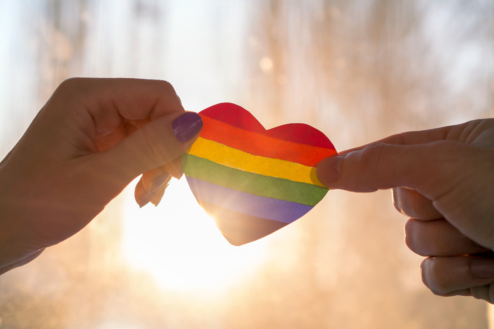 Individual lifting up a pride colored heart to sun in window. Regardless of what brings you to therapy, we can help . We offer anxiety treatment, trauma therapy, marriage counseling and couples therapy, and more. Begin LGBTQIA+ counseling in Detroit, MI today!